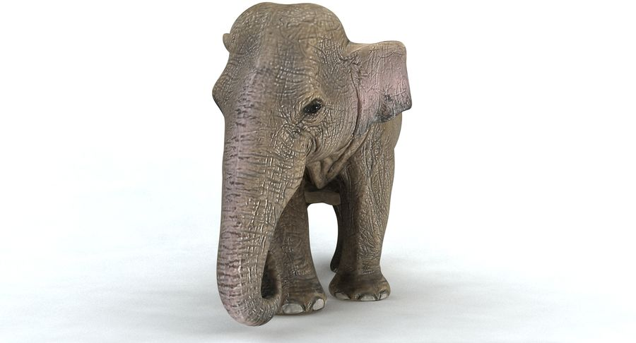Elephant royalty-free 3d model - Preview no. 4