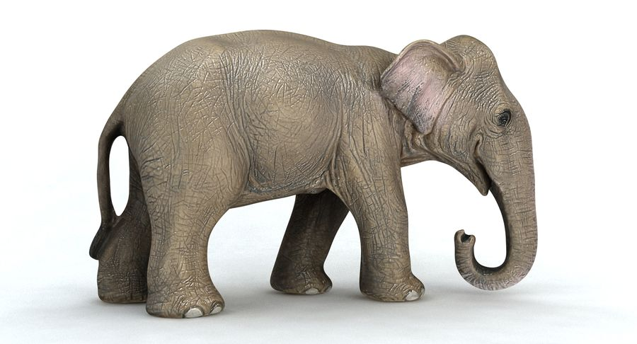 Elephant royalty-free 3d model - Preview no. 7