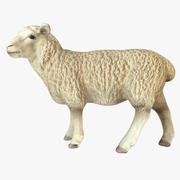 Owca 3d model