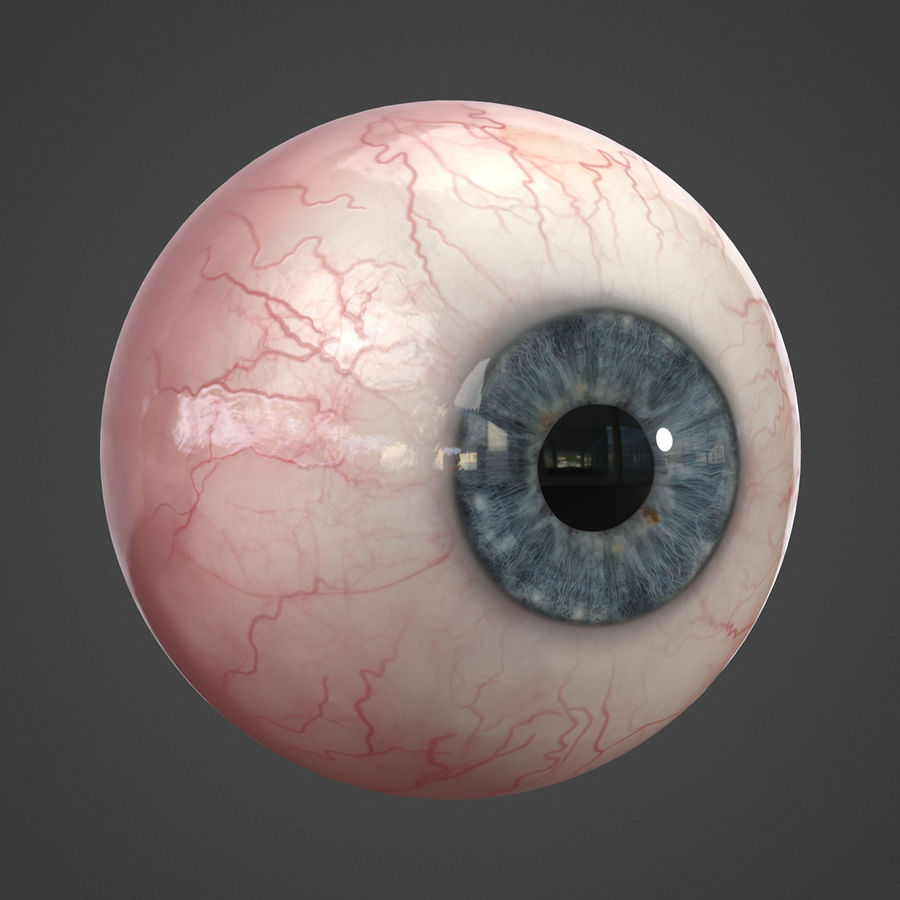 Oeil humain réaliste royalty-free 3d model - Preview no. 4