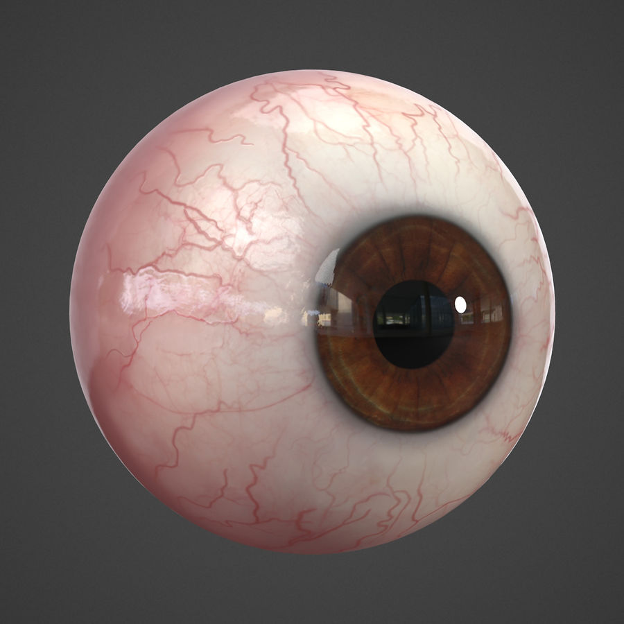 Oeil humain réaliste royalty-free 3d model - Preview no. 6