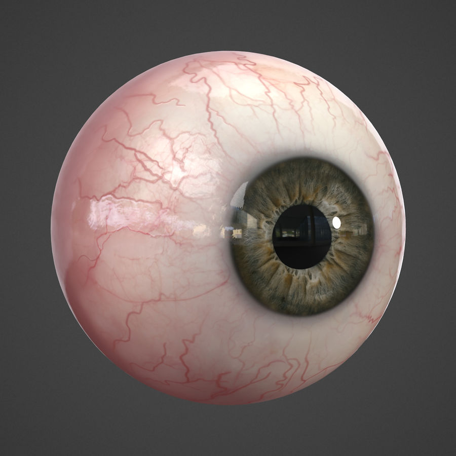 Oeil humain réaliste royalty-free 3d model - Preview no. 8