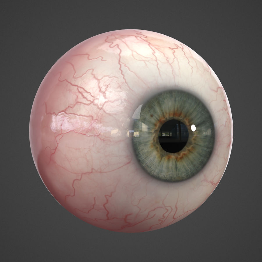 Oeil humain réaliste royalty-free 3d model - Preview no. 9