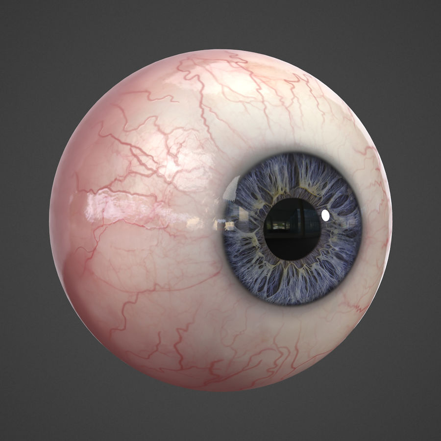 Oeil humain réaliste royalty-free 3d model - Preview no. 5