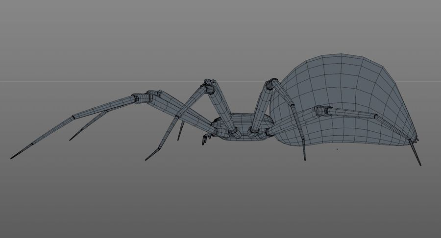 Black Widow Spider royalty-free 3d model - Preview no. 18