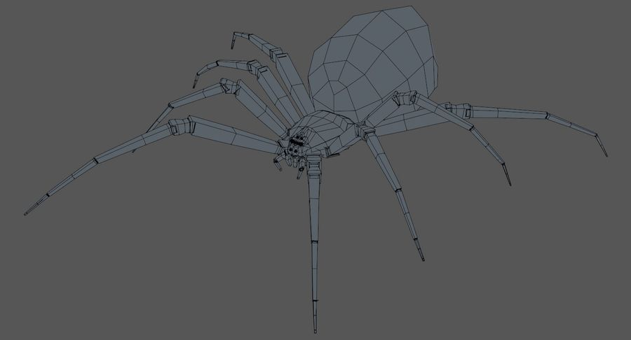 Black Widow Spider royalty-free 3d model - Preview no. 10