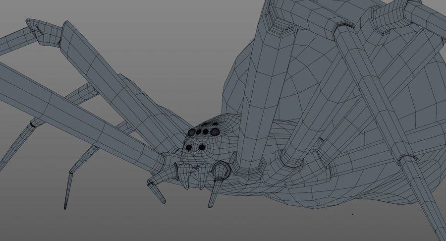 Black Widow Spider royalty-free 3d model - Preview no. 21