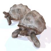 乌龟索具 3d model