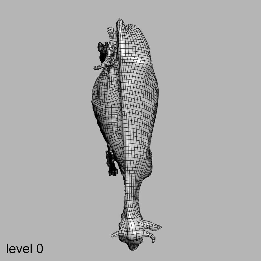 Anatomie de la vache royalty-free 3d model - Preview no. 30