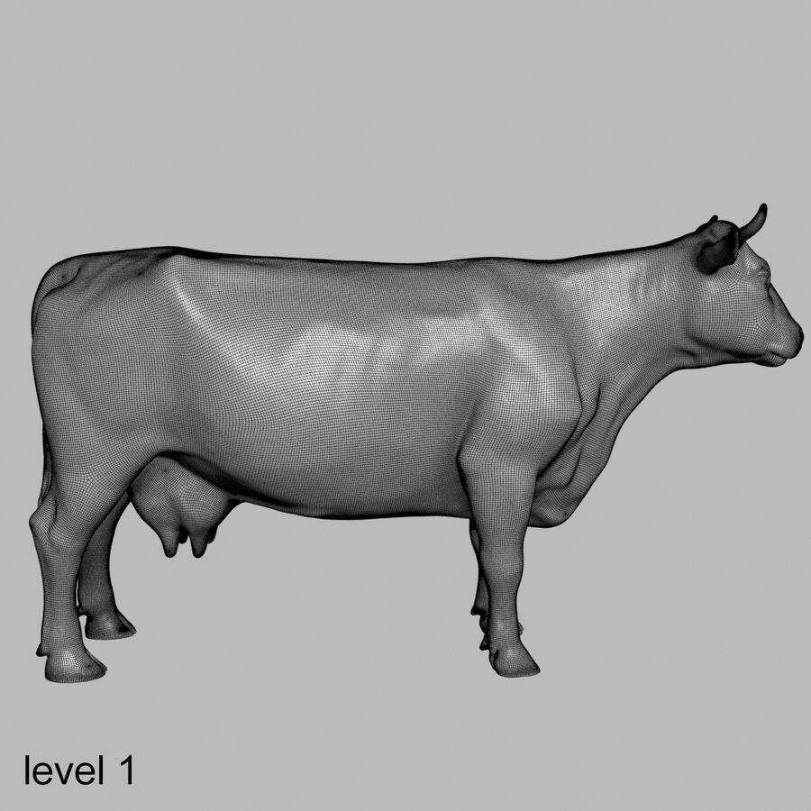 Anatomie de la vache royalty-free 3d model - Preview no. 45