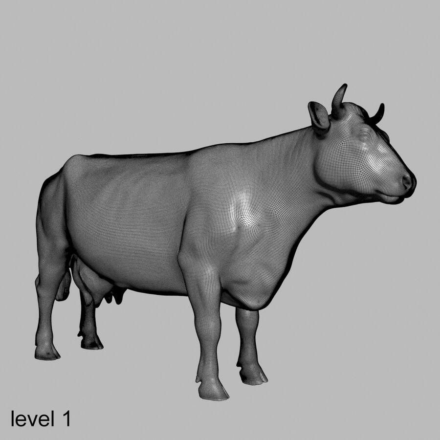 Anatomie de la vache royalty-free 3d model - Preview no. 37