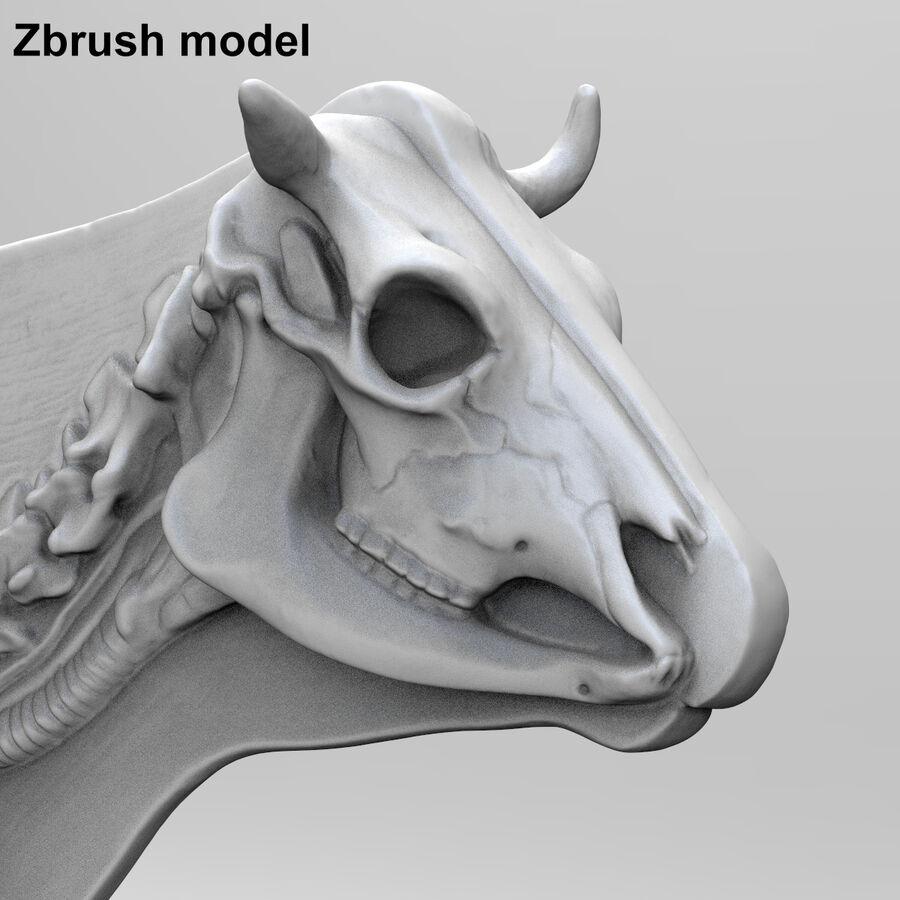 Anatomie de la vache royalty-free 3d model - Preview no. 24