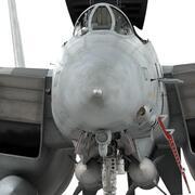 F-14D Super Tomcat (Rigged) 3d model