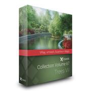CGAxis 모델 Volume 67-Trees VII VRAY VRMESH 3d model