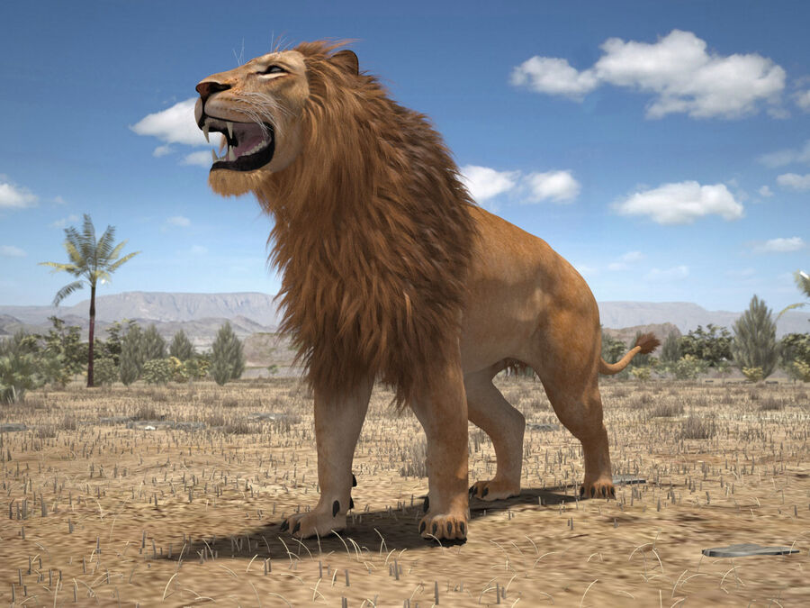 Lion The King Capelli testurizzati royalty-free 3d model - Preview no. 19