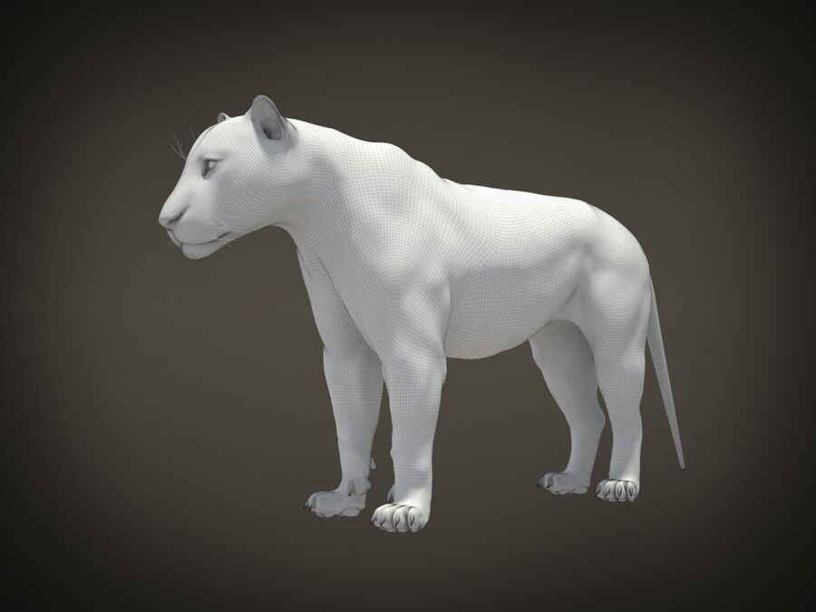 Lion The King Capelli testurizzati royalty-free 3d model - Preview no. 22