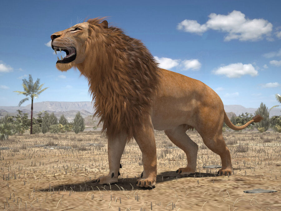 Lion The King Capelli testurizzati royalty-free 3d model - Preview no. 18