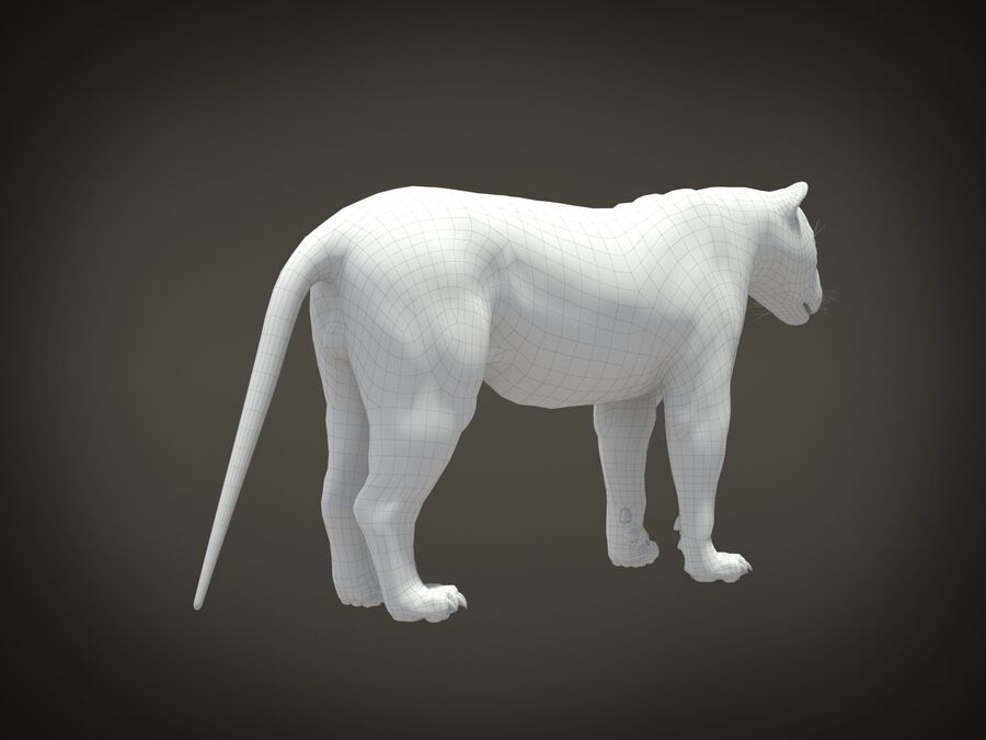 Lion The King Capelli testurizzati royalty-free 3d model - Preview no. 25