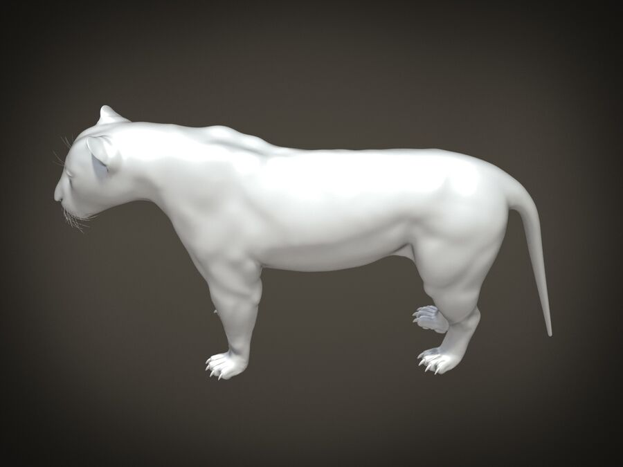 Lion The King Capelli testurizzati royalty-free 3d model - Preview no. 15