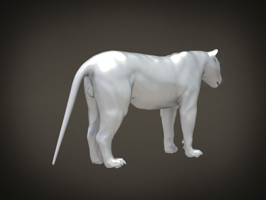 Lion The King Capelli testurizzati royalty-free 3d model - Preview no. 17