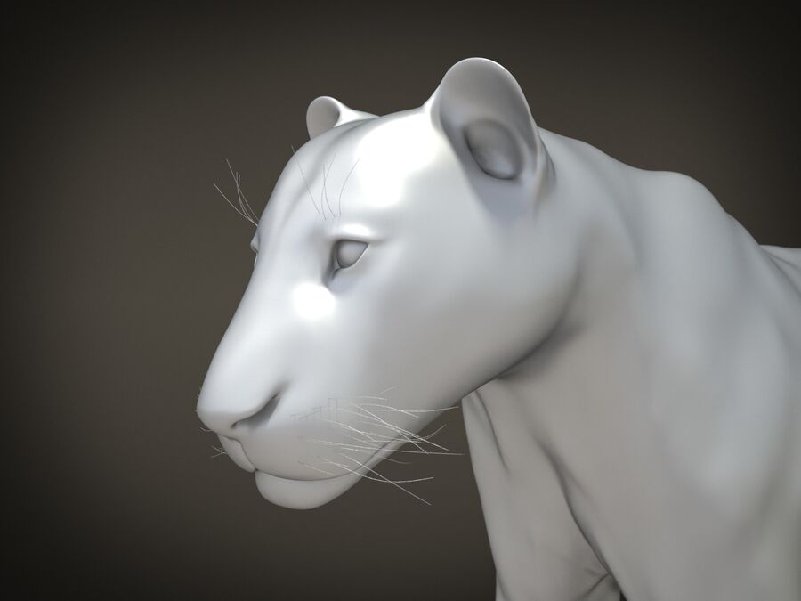 Lion The King Capelli testurizzati royalty-free 3d model - Preview no. 16