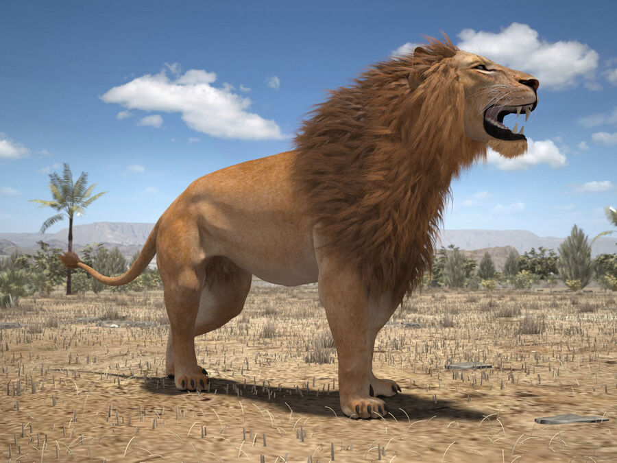 Lion The King Capelli testurizzati royalty-free 3d model - Preview no. 20