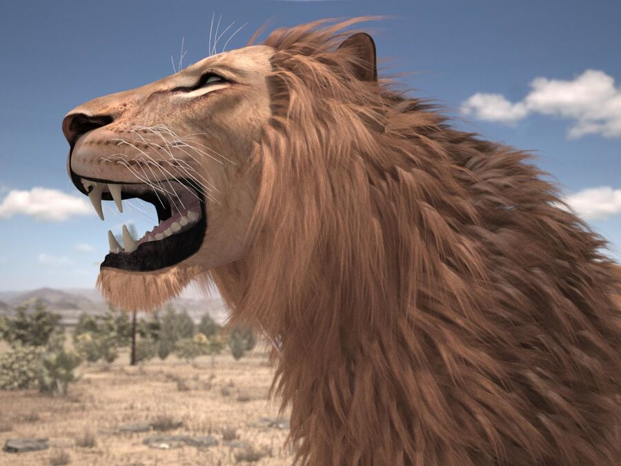 Lion The King Capelli testurizzati royalty-free 3d model - Preview no. 1