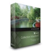 CGAxis Models Volume 67 - Trees VII 3d model