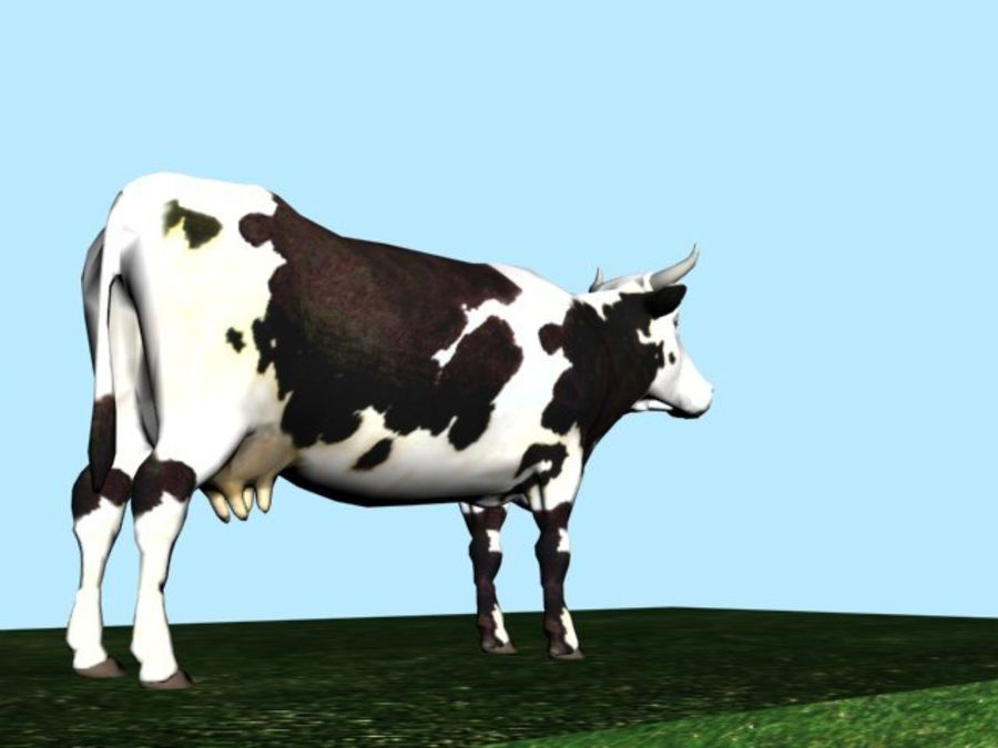 Mucca royalty-free 3d model - Preview no. 5