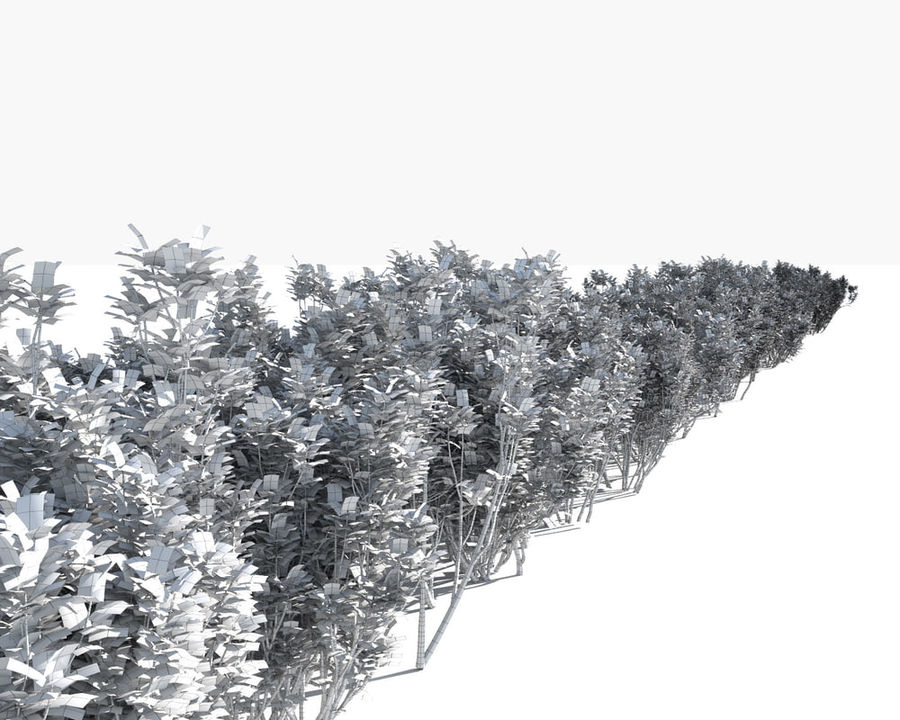 Multiscatter Bushes royalty-free 3d model - Preview no. 16