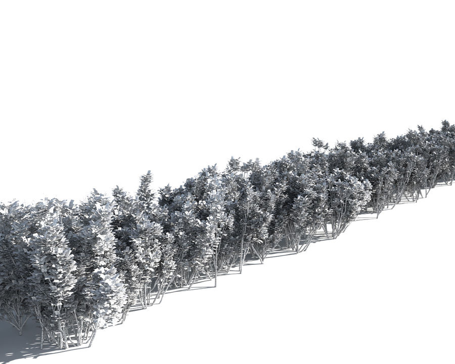 Multiscatter Bushes royalty-free 3d model - Preview no. 12