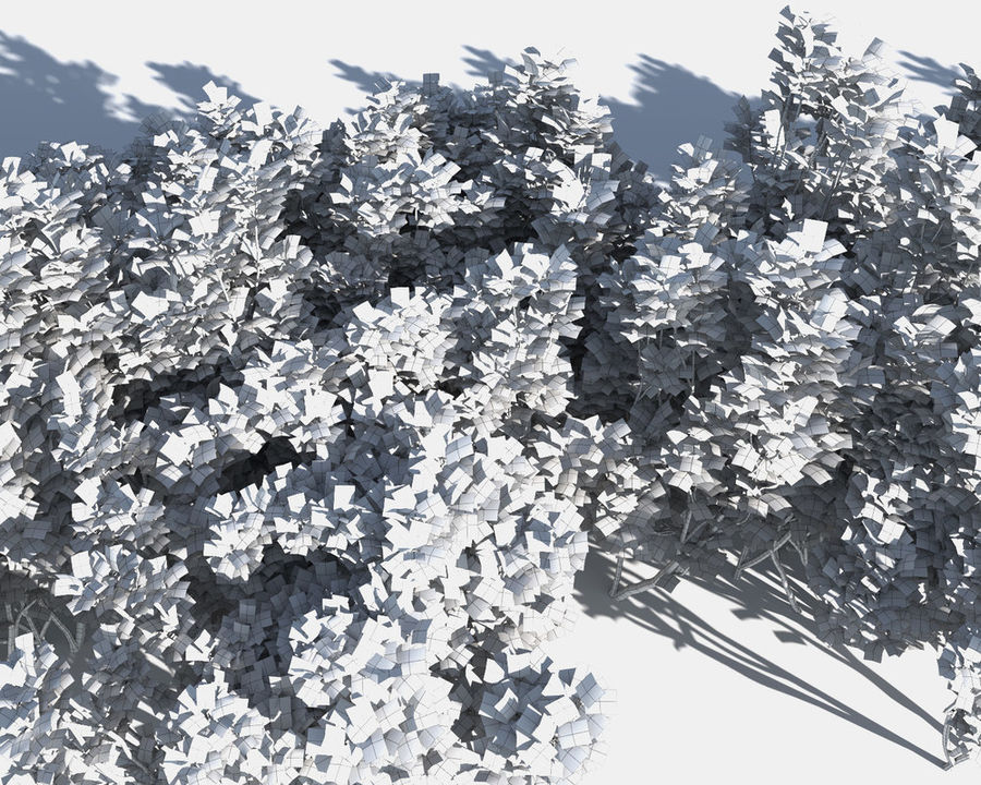 Multiscatter Bushes royalty-free 3d model - Preview no. 15