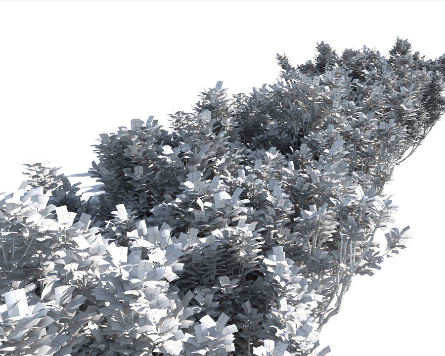 Multiscatter Bushes royalty-free 3d model - Preview no. 14