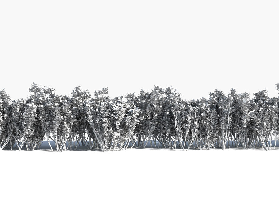 Multiscatter Bushes royalty-free 3d model - Preview no. 13