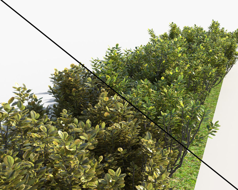 Multiscatter Bushes royalty-free 3d model - Preview no. 4