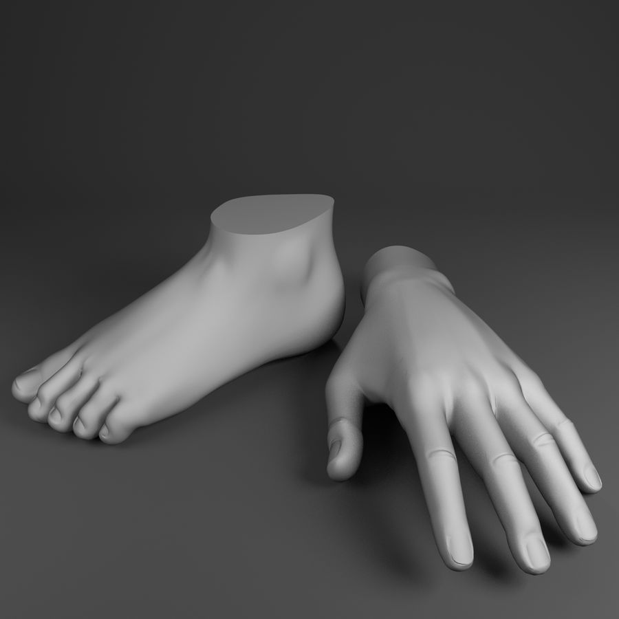 Pied et main humaine royalty-free 3d model - Preview no. 1