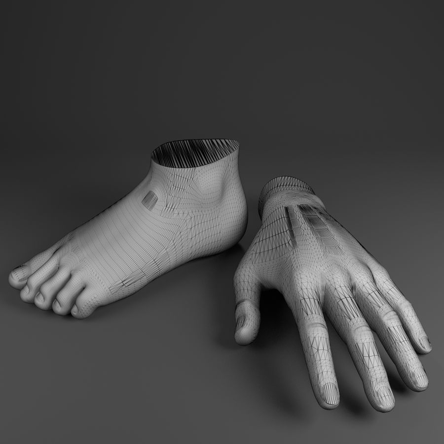 Pied et main humaine royalty-free 3d model - Preview no. 2