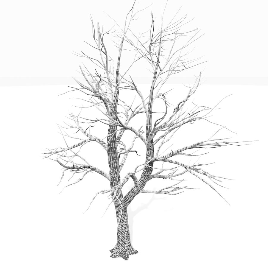 裸の葉のない秋の木 royalty-free 3d model - Preview no. 22