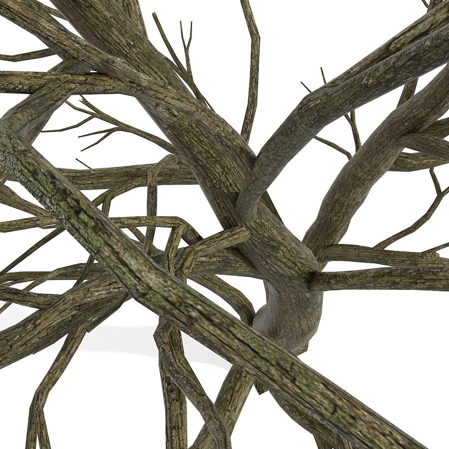 裸の葉のない秋の木 royalty-free 3d model - Preview no. 20