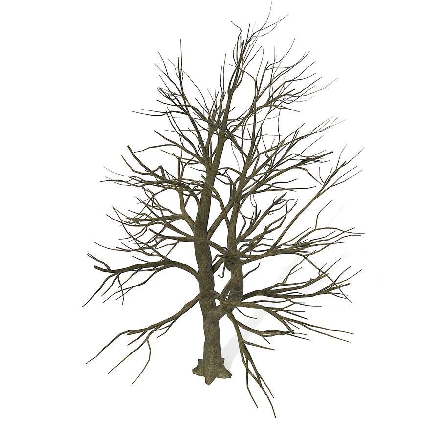 裸の葉のない秋の木 royalty-free 3d model - Preview no. 17