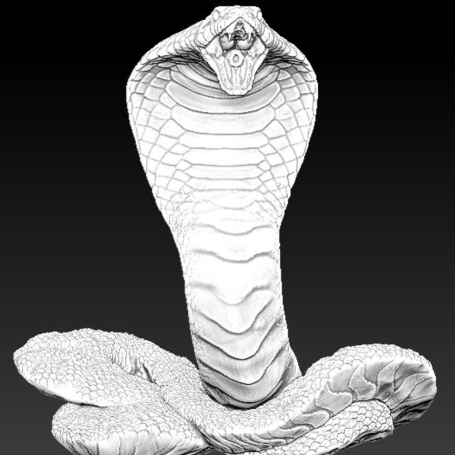 Королевская кобра royalty-free 3d model - Preview no. 2