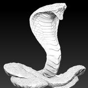 Kobra królewska 3d model