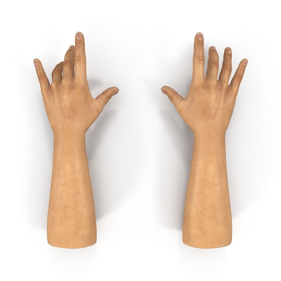 Man Hands 2 Pose 3 royalty-free 3d model - Preview no. 3