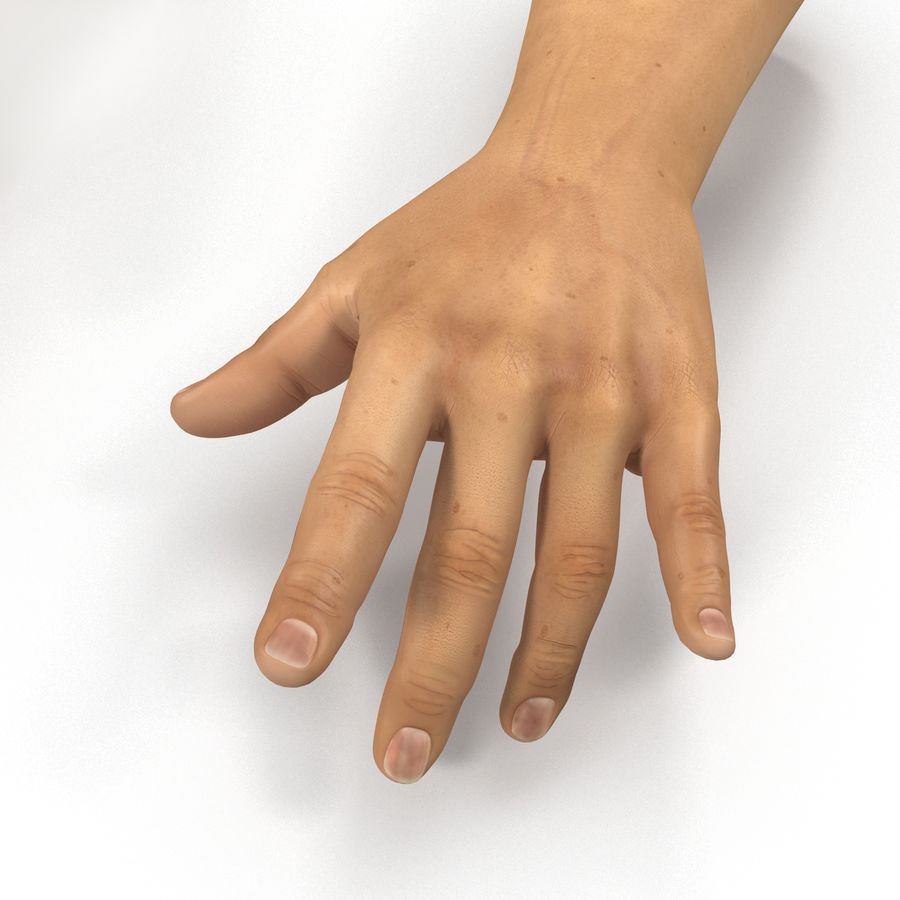 Man Hands 2 Pose 3 royalty-free 3d model - Preview no. 11