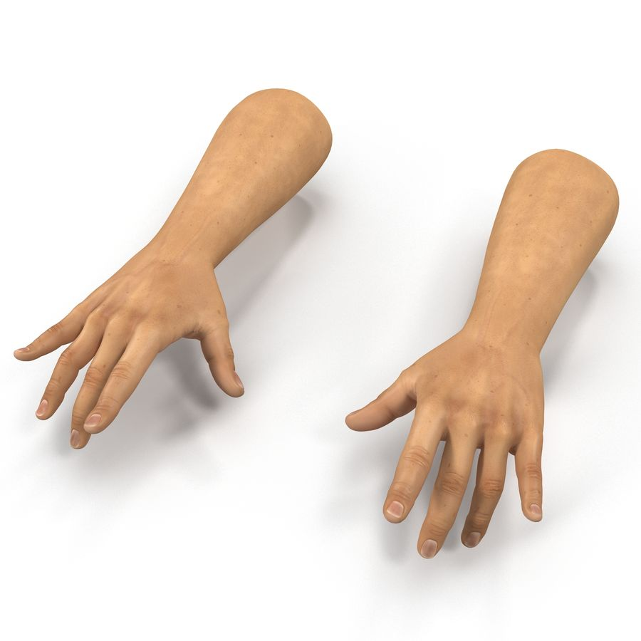 Man Hands 2 Pose 3 royalty-free 3d model - Preview no. 2