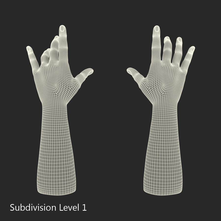 Man Hands 2 Pose 3 royalty-free 3d model - Preview no. 16