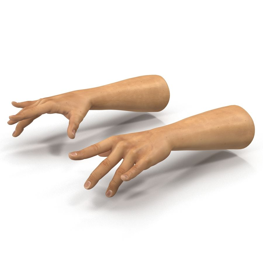 Man Hands 2 Pose 3 royalty-free 3d model - Preview no. 8
