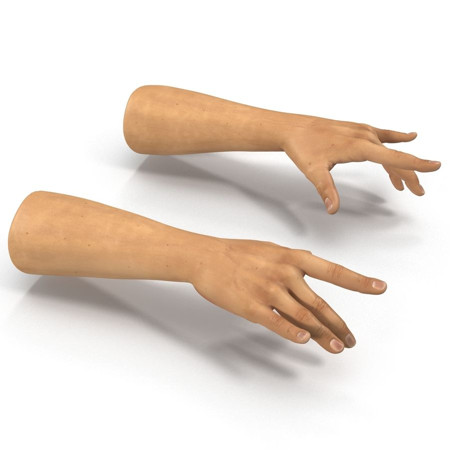 Man Hands 2 Pose 3 royalty-free 3d model - Preview no. 6