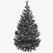 雪と松のモミの木 3d model