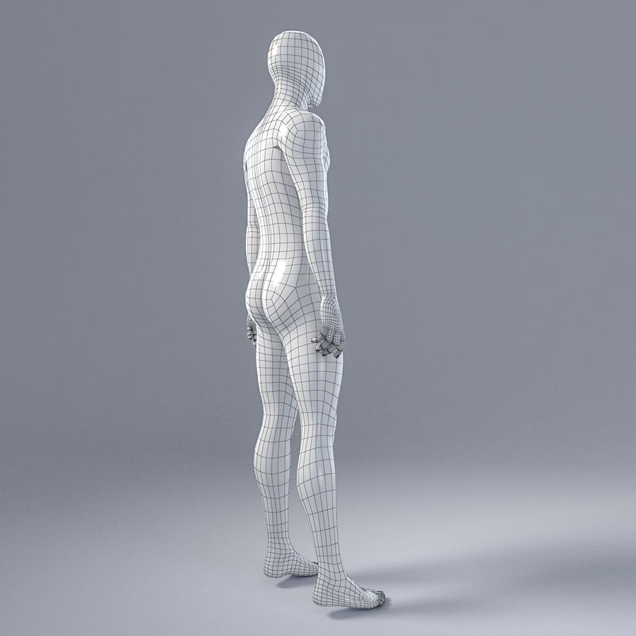 Male mannequin 4 royalty-free 3d model - Preview no. 11